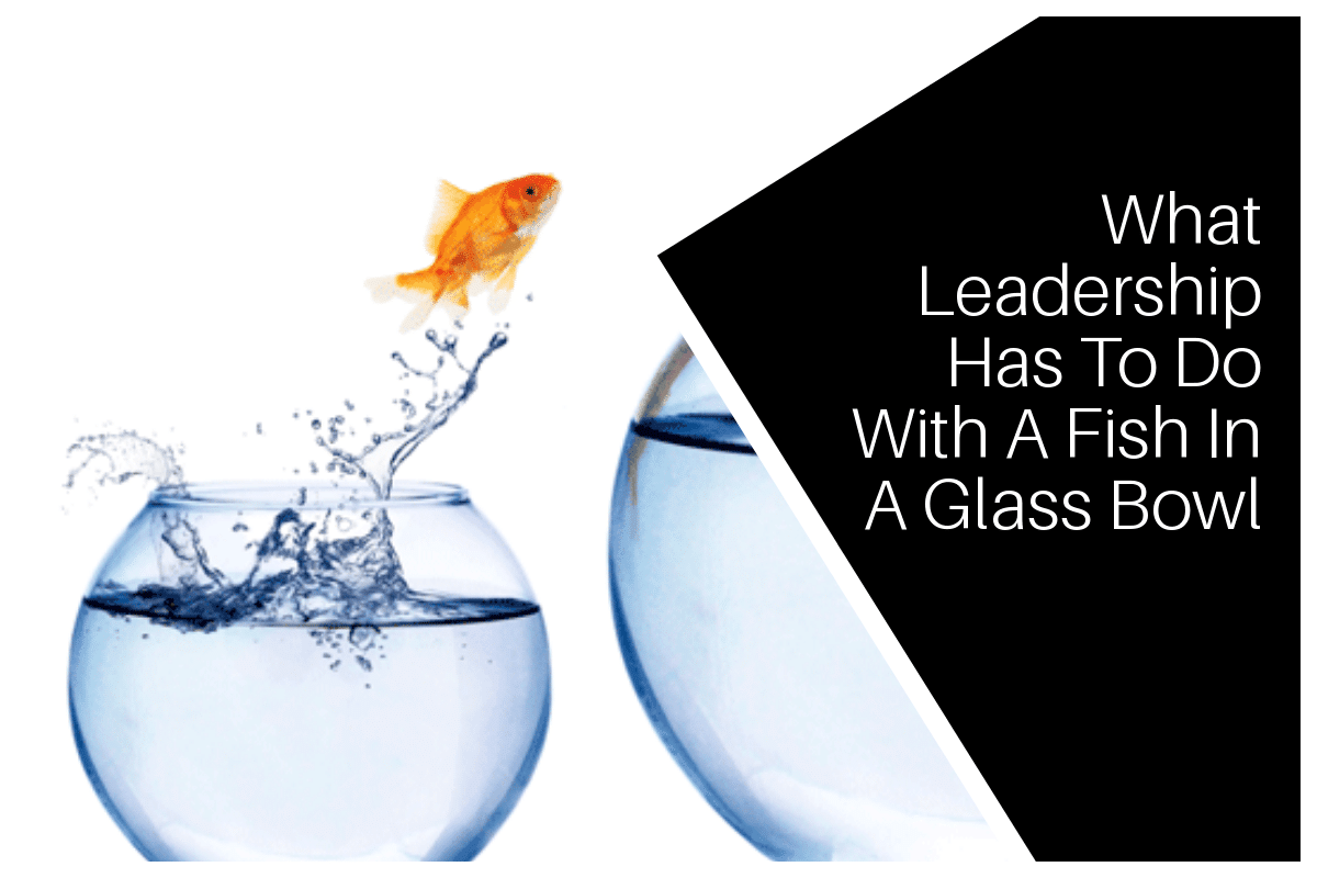 What Leadership Has To Do With A Fish In A Glass Bowl